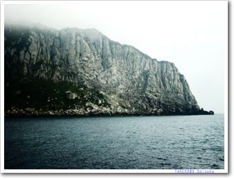 沖ノ島の画像 p1_6